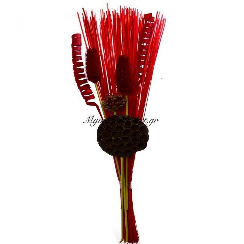Σύνθεση αποξηραμένων λουλουδιών κόκκινο LZG33-5RED