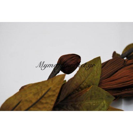 Αποξηραμένο λουλούδι καφέ Στην κατηγορία Αποξηραμένα Λουλούδια   Mymegamarket.gr