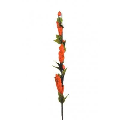 Αποξηραμένο λουλούδι πορτοκαλί