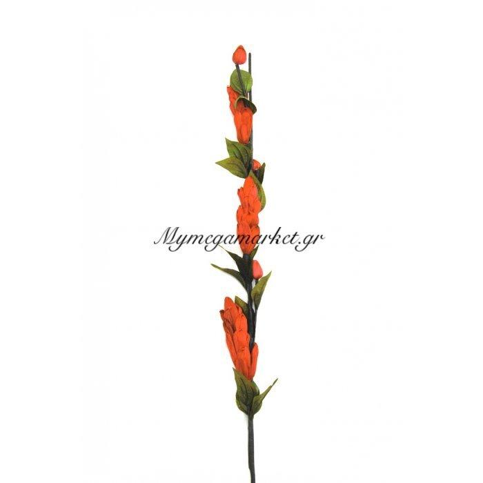 Αποξηραμένο λουλούδι πορτοκαλί | Mymegamarket.gr