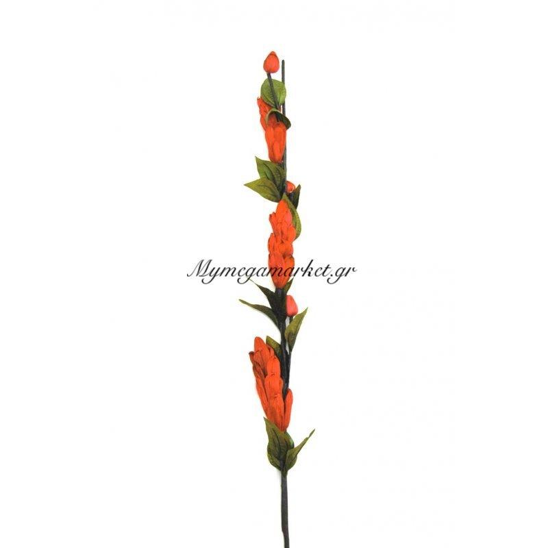 Αποξηραμένο λουλούδι πορτοκαλί Στην κατηγορία Αποξηραμένα Λουλούδια | Mymegamarket.gr
