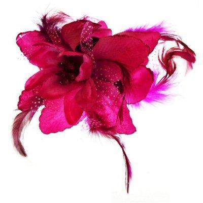 Λουλούδι κλάμερ σε φούξια χρώμα