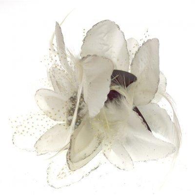 Λουλούδι κλάμερ σε λευκό χρώμα
