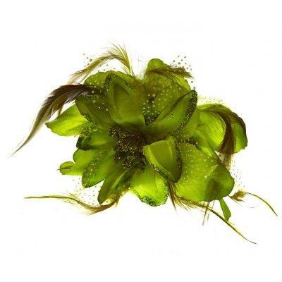 Λουλούδι κλάμερ σε πράσινο χρώμα