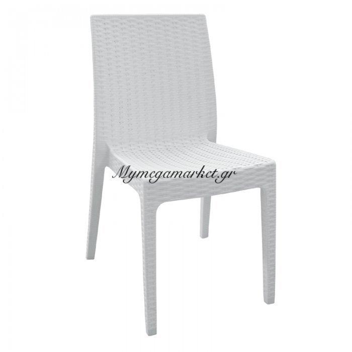 Dafne Καρέκ.πλαστική Άσπρη (Rattan Look) | Mymegamarket.gr
