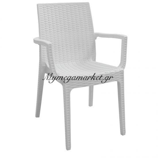 Dafne Πολυθ.πλαστική Άσπρη (Rattan Look) Στην κατηγορία Πολυθρόνες κήπου | Mymegamarket.gr
