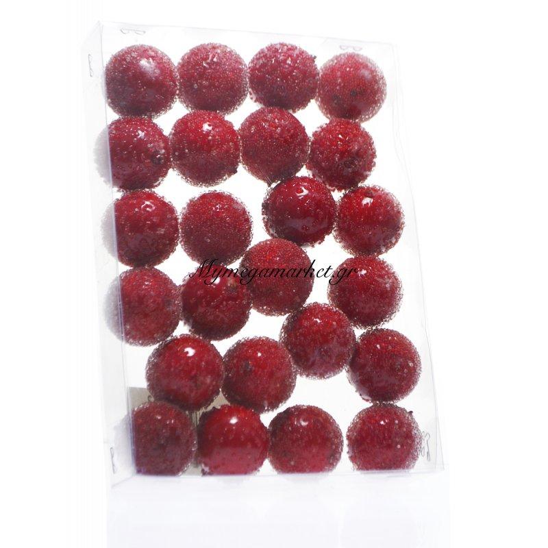 Φρούτα μινιατούρες χριστουγεννιάτικες σέτ 24 τεμαχίων